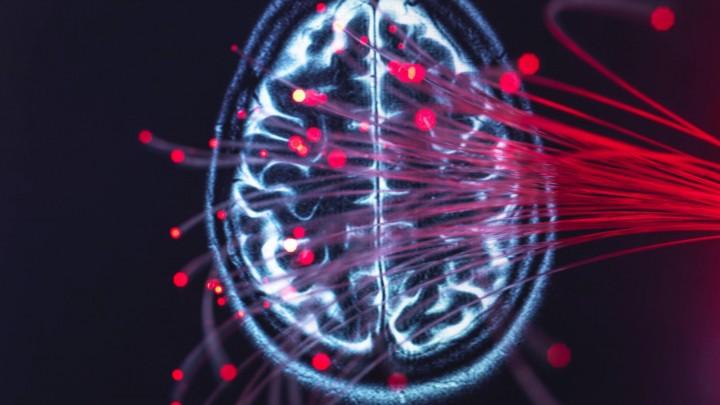 Darstellung des Gehirns und der Faseroptik, die Daten um das Gehirn herum überträgt (imago / Westend61 )