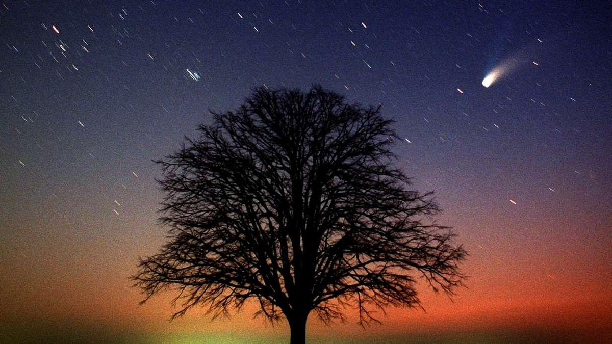 Photo of Neowise ist noch heute zu sehen: Der Komet ist am Himmel sichtbar
