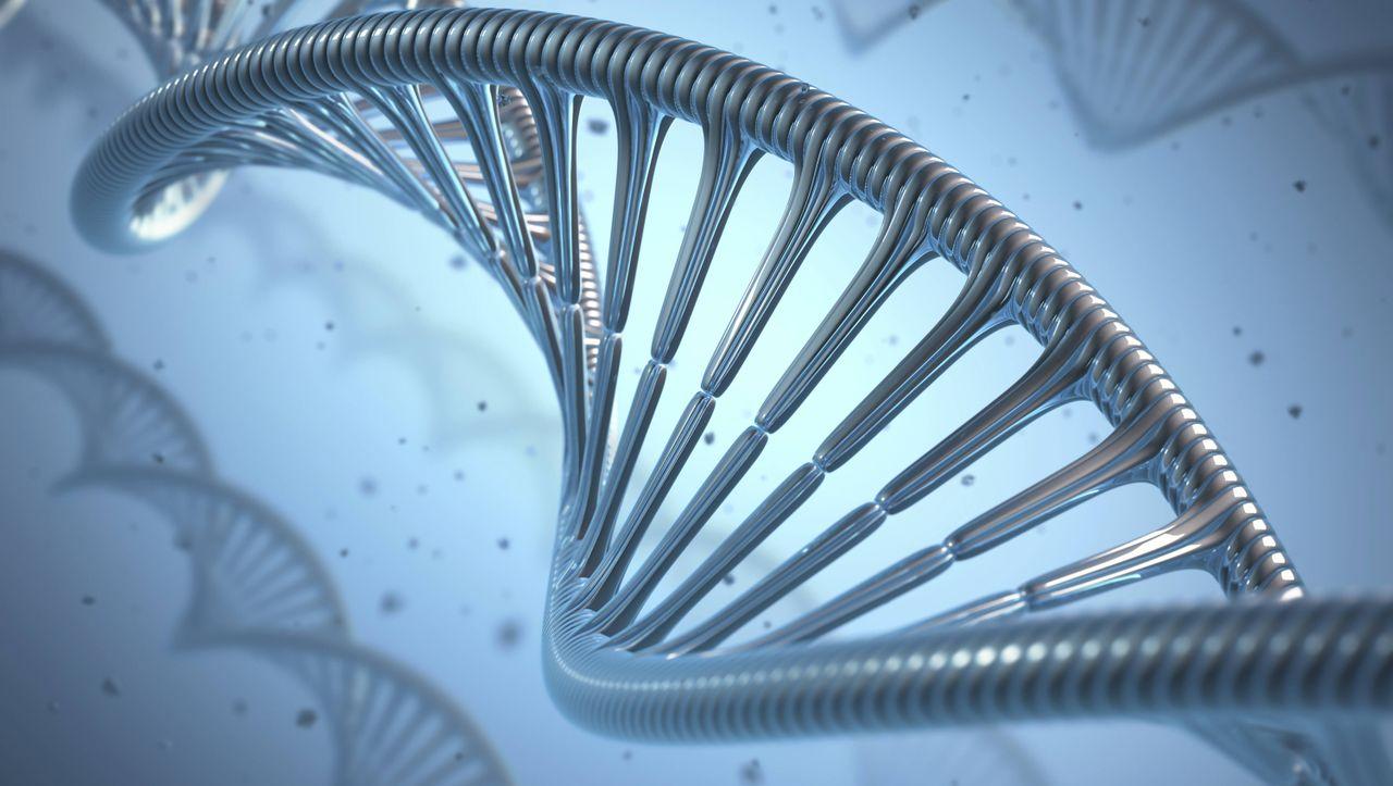 Photo of Für Microsoft Excel: Forscher benennen menschliche Gene um
