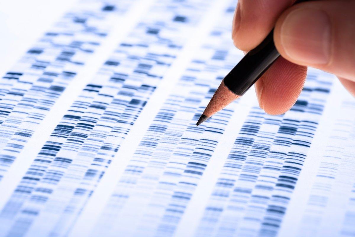 Photo of In Daten aus Excel konvertiert: Dutzende umbenannter Gene