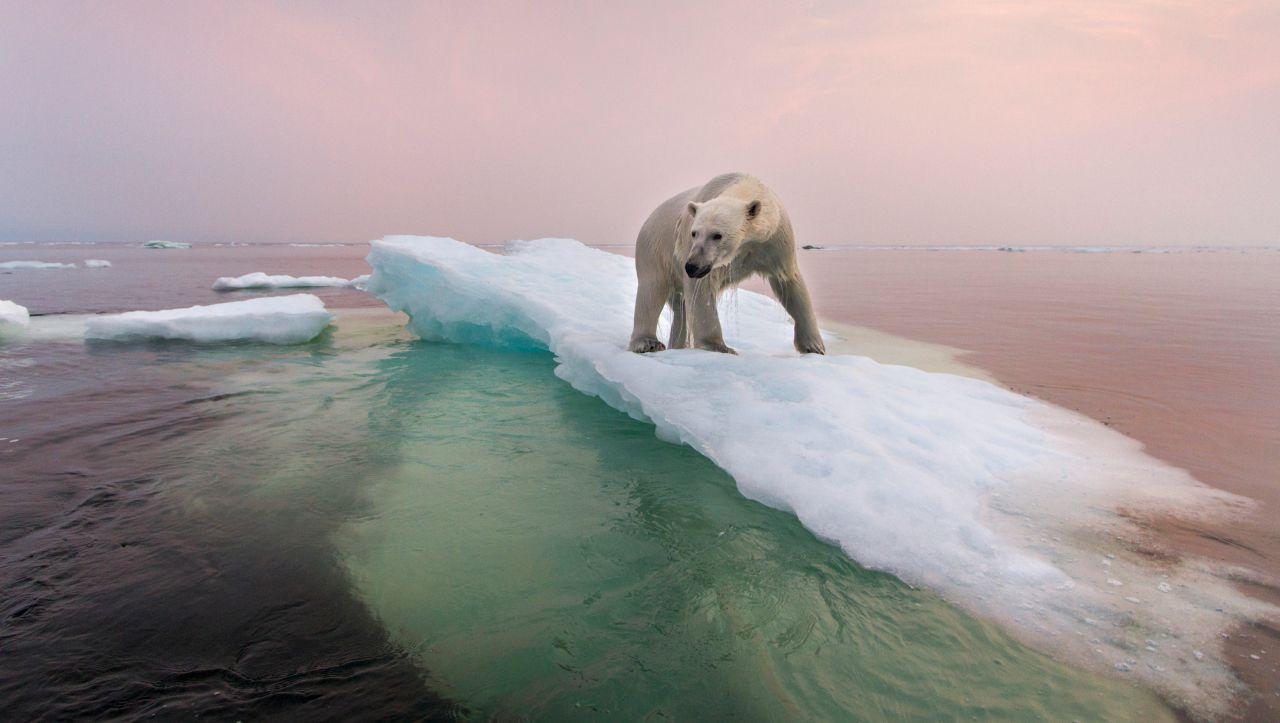 Photo of Klima: Der Verlust des arktischen Eises bedeutet für uns