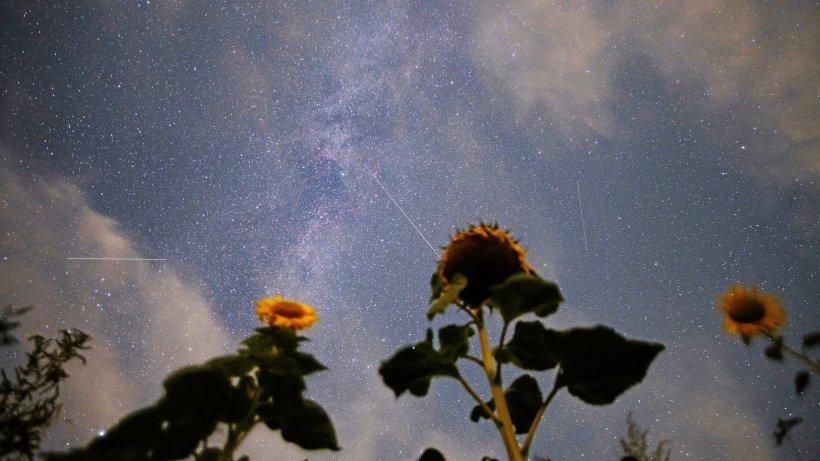 Photo of Perseiden: So viele Sternschnuppen sind jetzt zu sehen