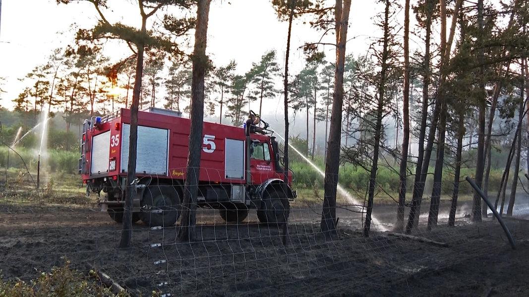 Waldbrand bei A7: Die Flammen wurden so weit wie möglich gelöscht NDR.de - Nachrichten - Niedersachsen
